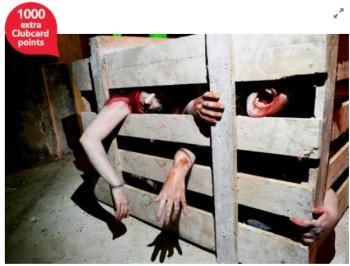 Zombie Battle Training Experience in London - Sundays