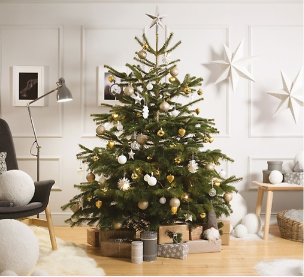 Save with IKEA coupons and special offers for December Today's top IKEA offer: Free $25 Coupon With Christmas Tree Purchase of $